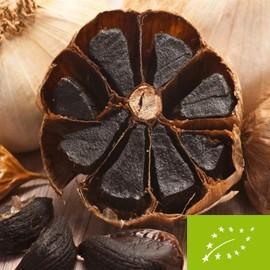 Black Garlic Honey